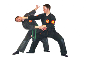 Ninpo techniques shown by chief instructor